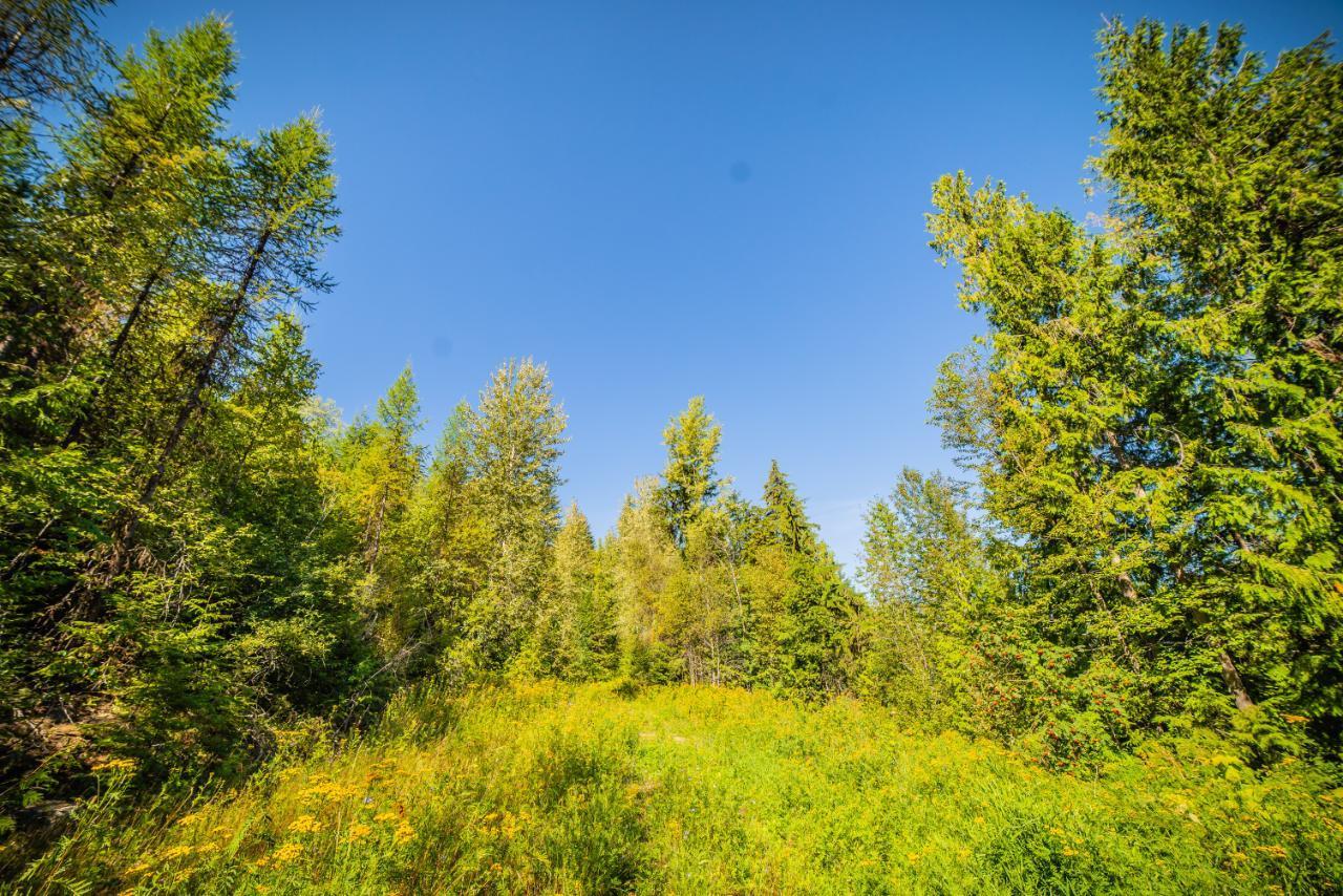 2402 Silver King Road, Nelson, British Columbia  V1L 1C9 - Photo 29 - 2454204
