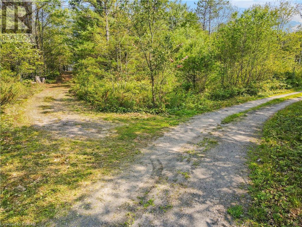 11380 Cowies Road, Georgian Bay Twp, Ontario  P0C 1H0 - Photo 25 - 40142007