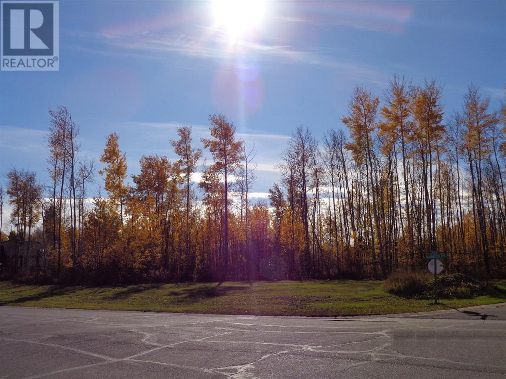 1 Boreal Crescent, High Level, Alberta  T0H 1Z0 - Photo 1 - A1027509