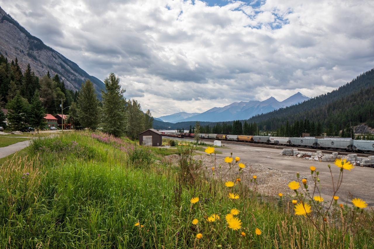 316 Stephen Avenue, East Highway 1, British Columbia  V0A 1G0 - Photo 36 - 2460469
