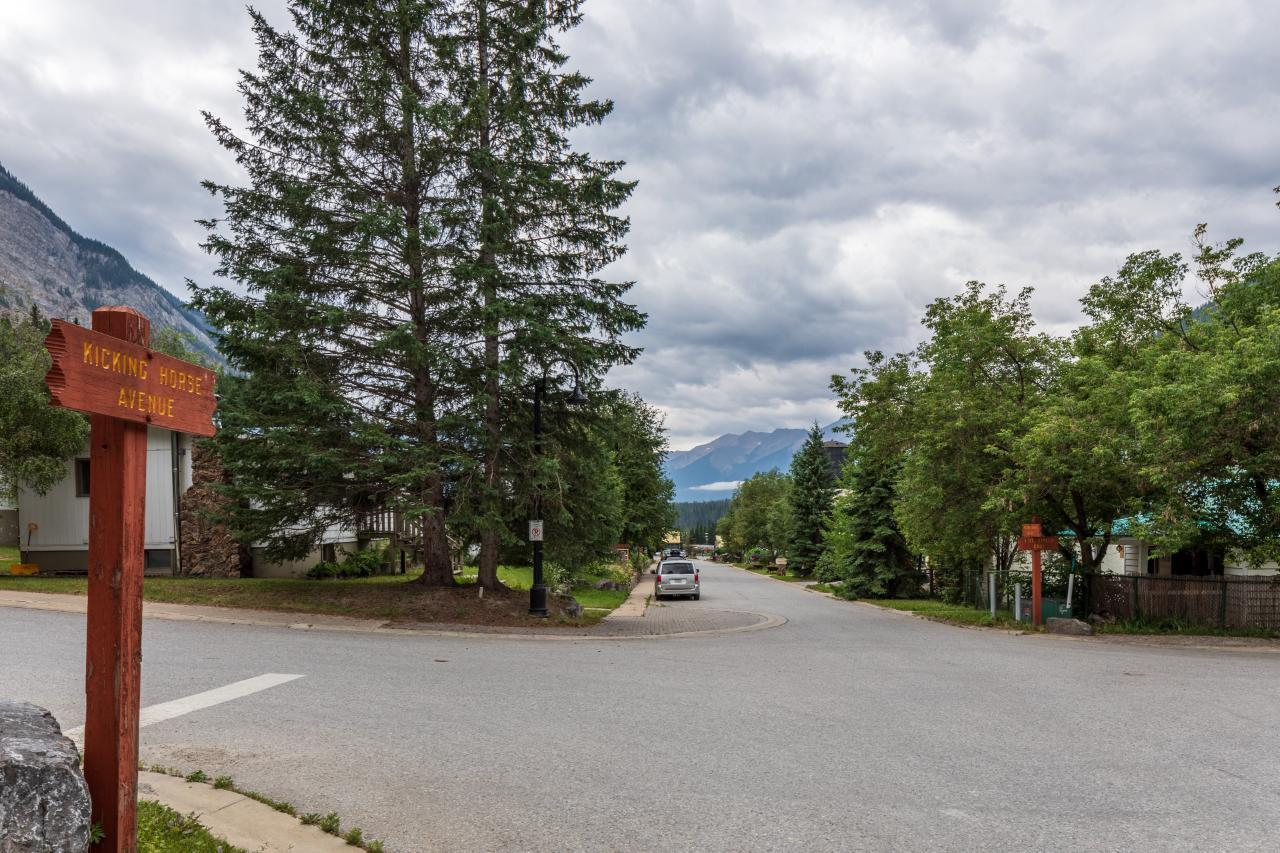 316 Stephen Avenue, East Highway 1, British Columbia  V0A 1G0 - Photo 39 - 2460469