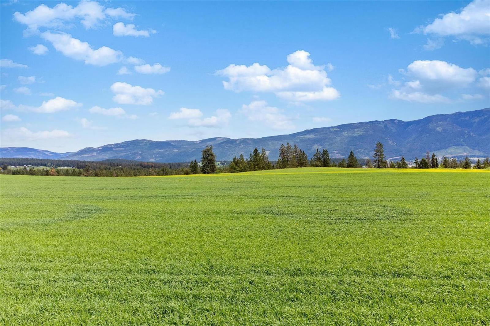 4602 Schubert Road,, Armstrong, British Columbia  V0E 1B4 - Photo 1 - 10232684
