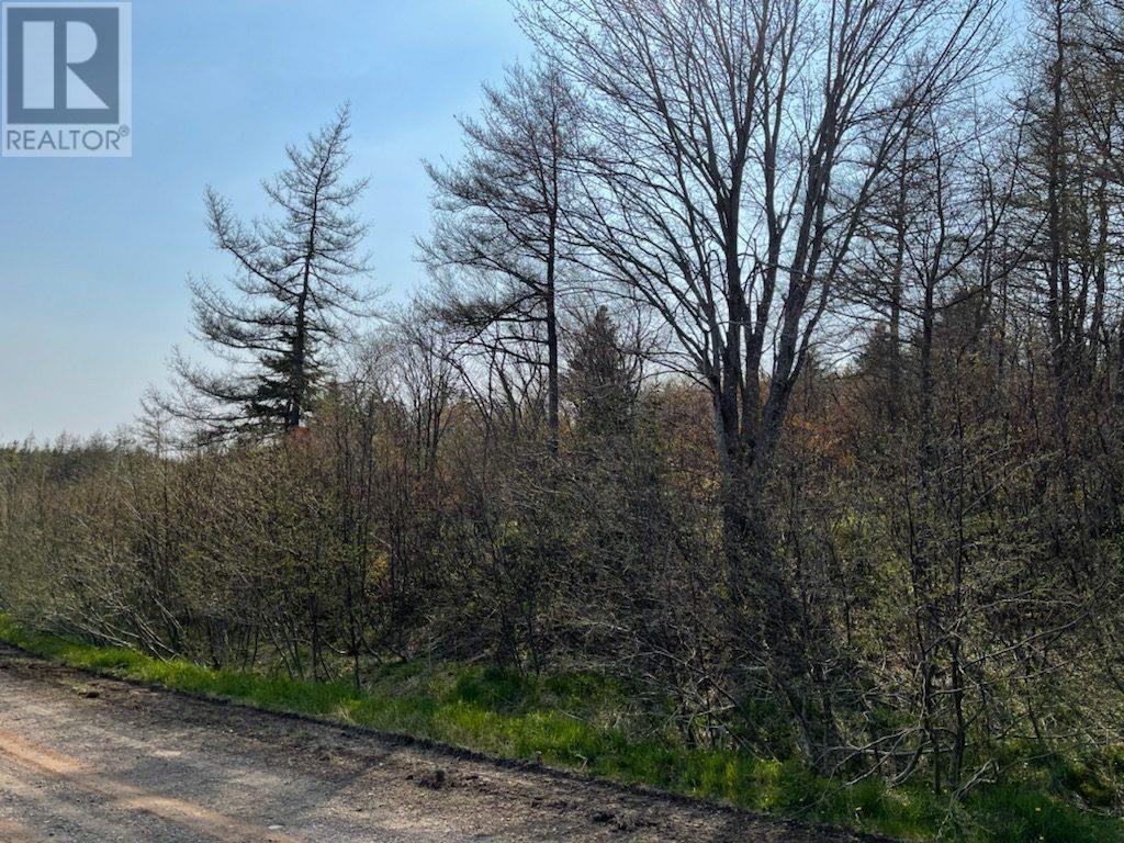 218 Port Malcolm Road, Richmond County, Nova Scotia  B9A 1Z6 - Photo 5 - 202112609