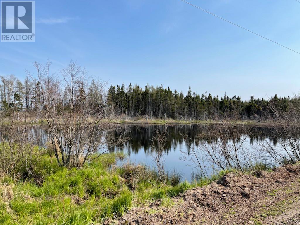 218 Port Malcolm Road, Richmond County, Nova Scotia  B9A 1Z6 - Photo 6 - 202112609