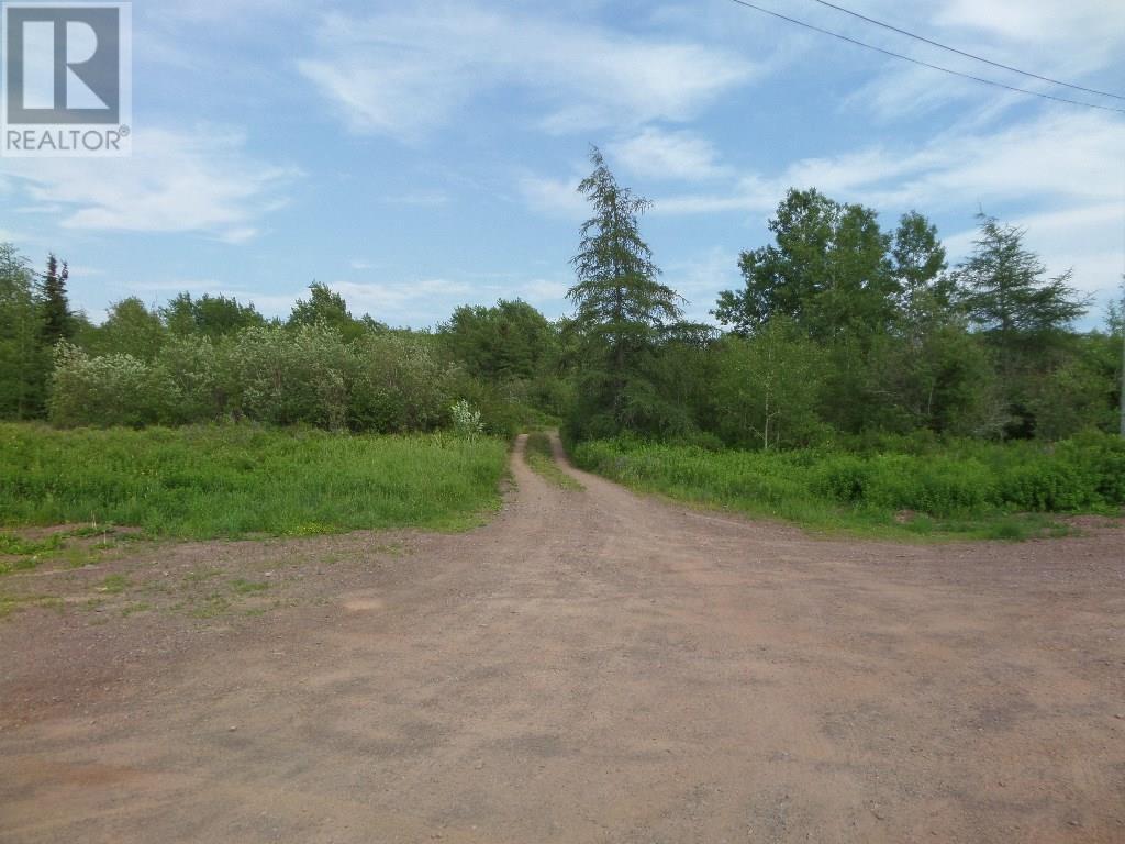 74 Valley Road, Botwood, Newfoundland & Labrador  A0H 1E0 - Photo 1 - 1200066