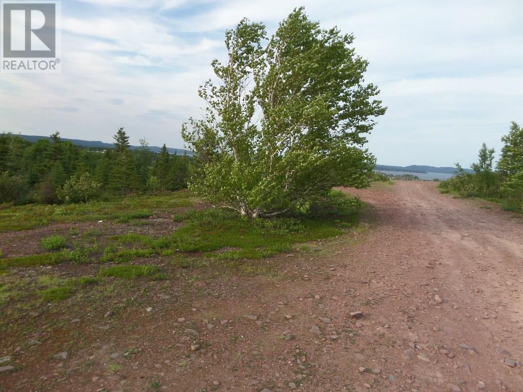 74 Valley Road, Botwood, Newfoundland & Labrador  A0H 1E0 - Photo 19 - 1200066