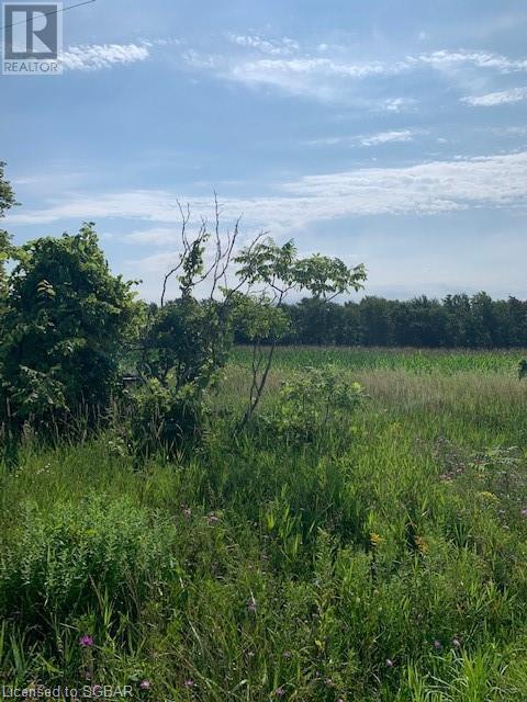 264094 24 Sideroad, Meaford (Municipality), Ontario  N0H 1B0 - Photo 3 - 40154084