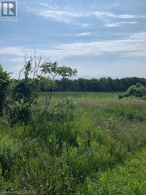 264094 24 Sideroad, Meaford (Municipality), Ontario  N0H 1B0 - Photo 5 - 40154084