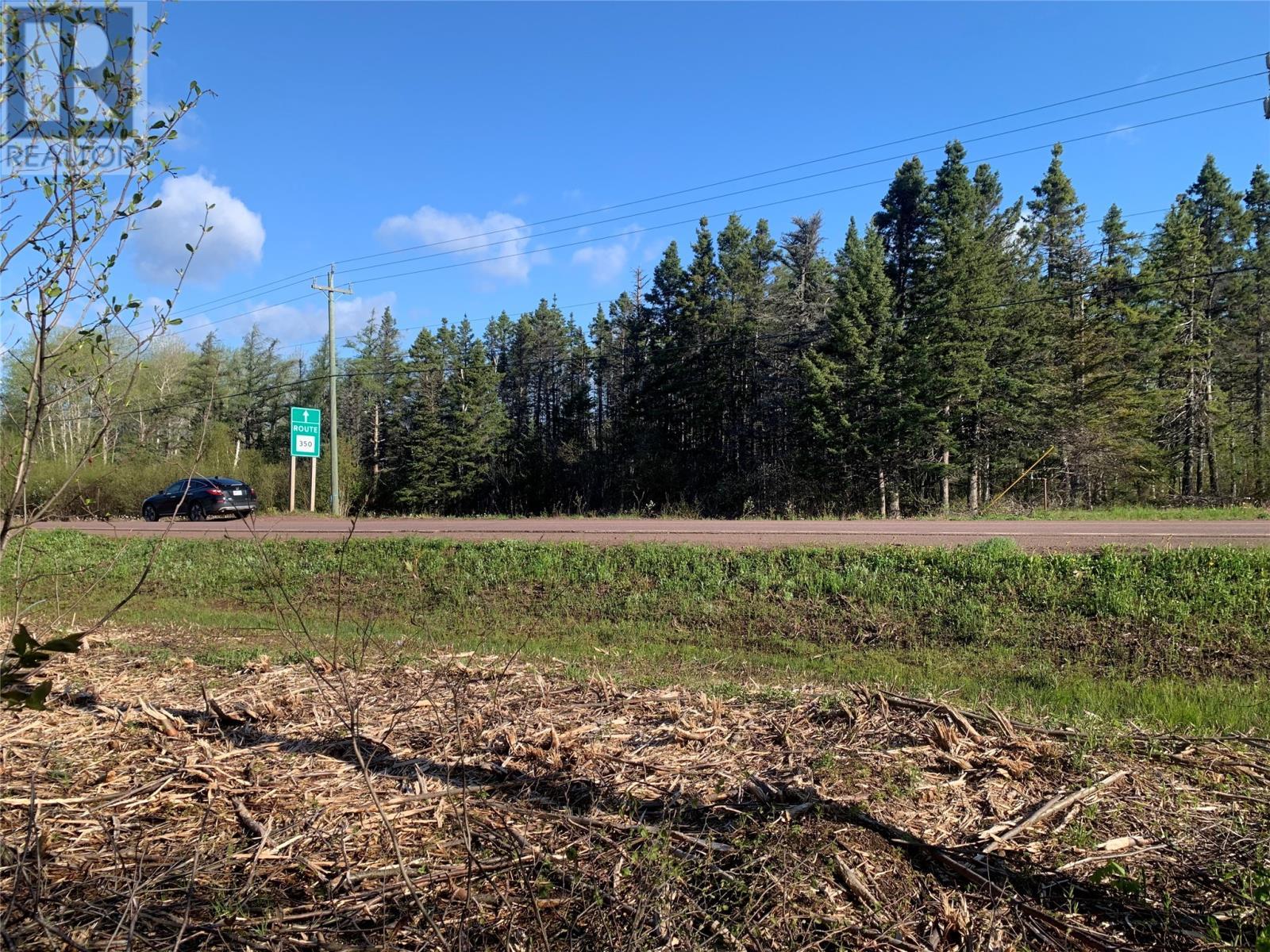 300 Highway 350, Botwood, Newfoundland & Labrador  A0H 1E0 - Photo 6 - 1231266