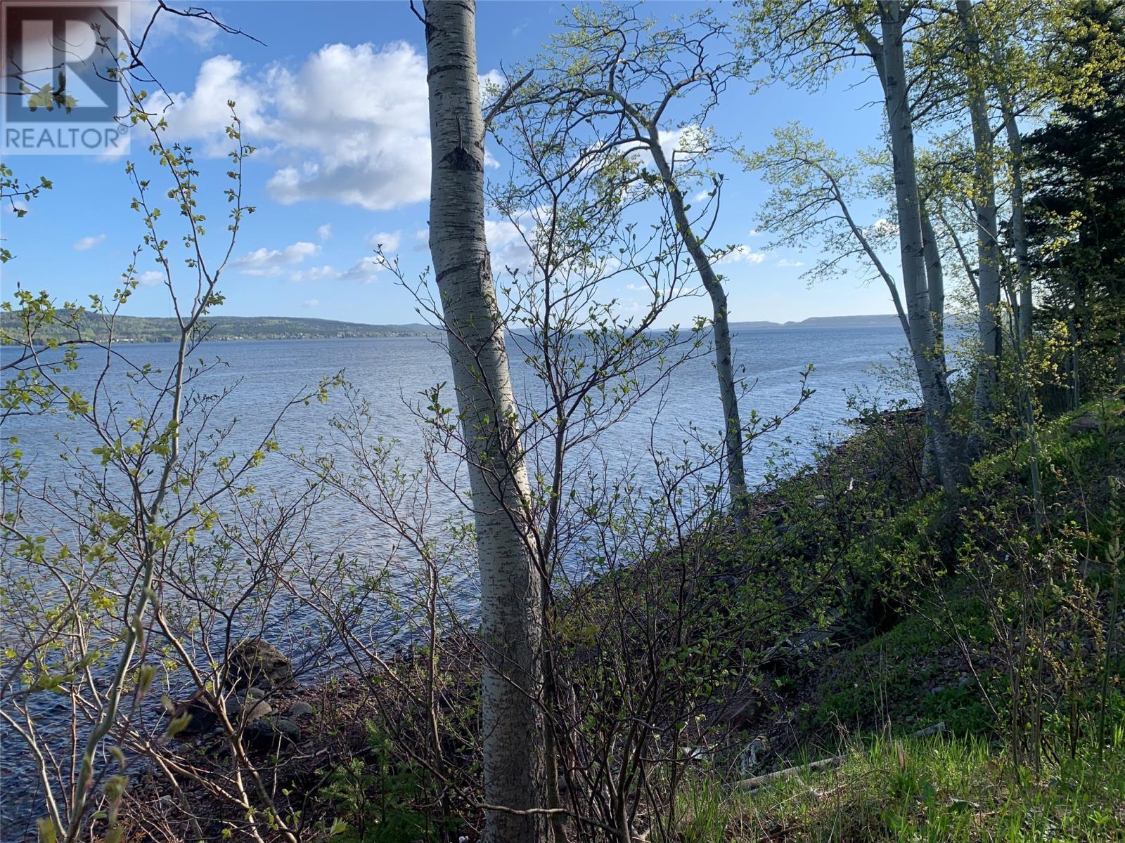 271 Highway 350, Botwood, Newfoundland & Labrador  A0H 1E0 - Photo 6 - 1231267