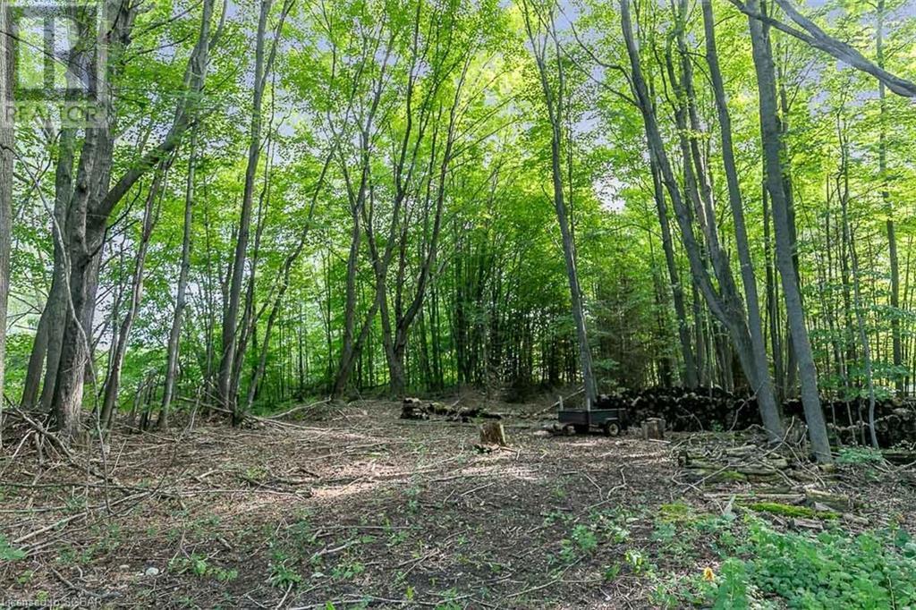1433 Methodist Point Road, Tiny, Ontario  L9M 0S6 - Photo 20 - 40153808