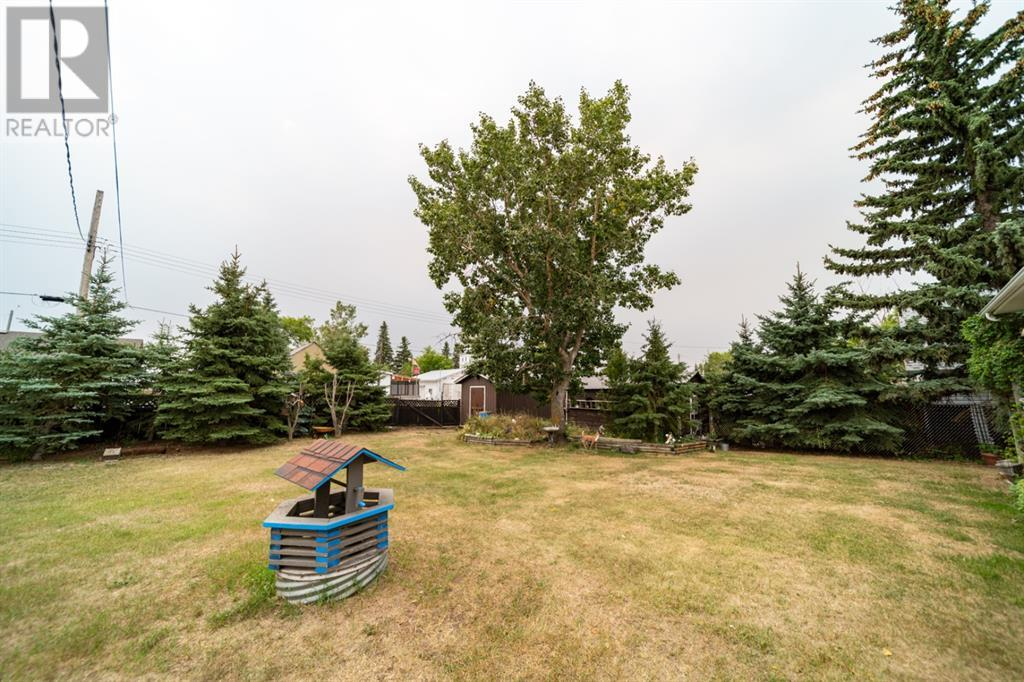 4915 49 Street, Czar, Alberta  T0B 0Z0 - Photo 17 - A1139370