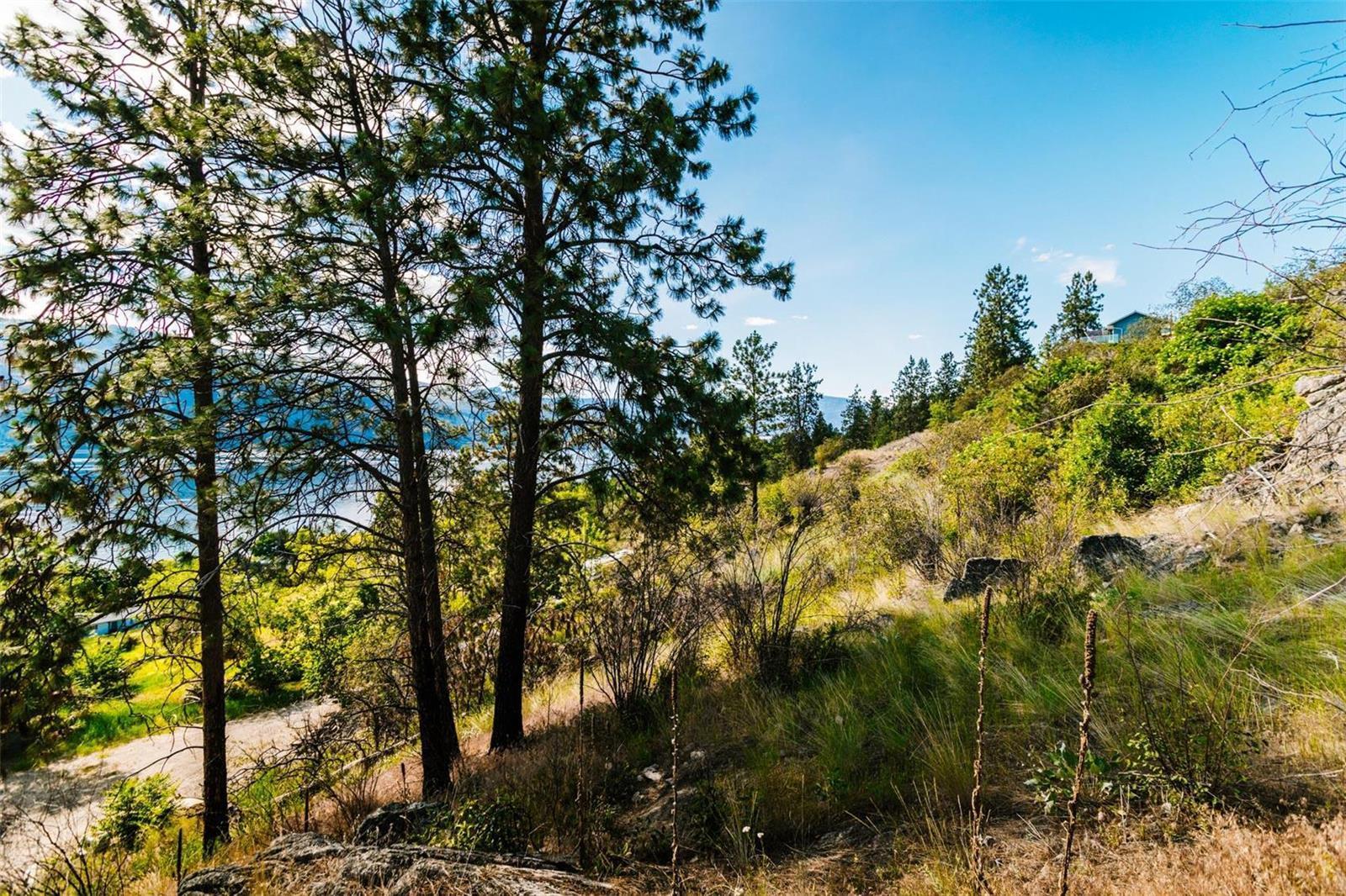 12815 Pixton Road, Sw, Lake Country, British Columbia  V4V 1C9 - Photo 16 - 10238768