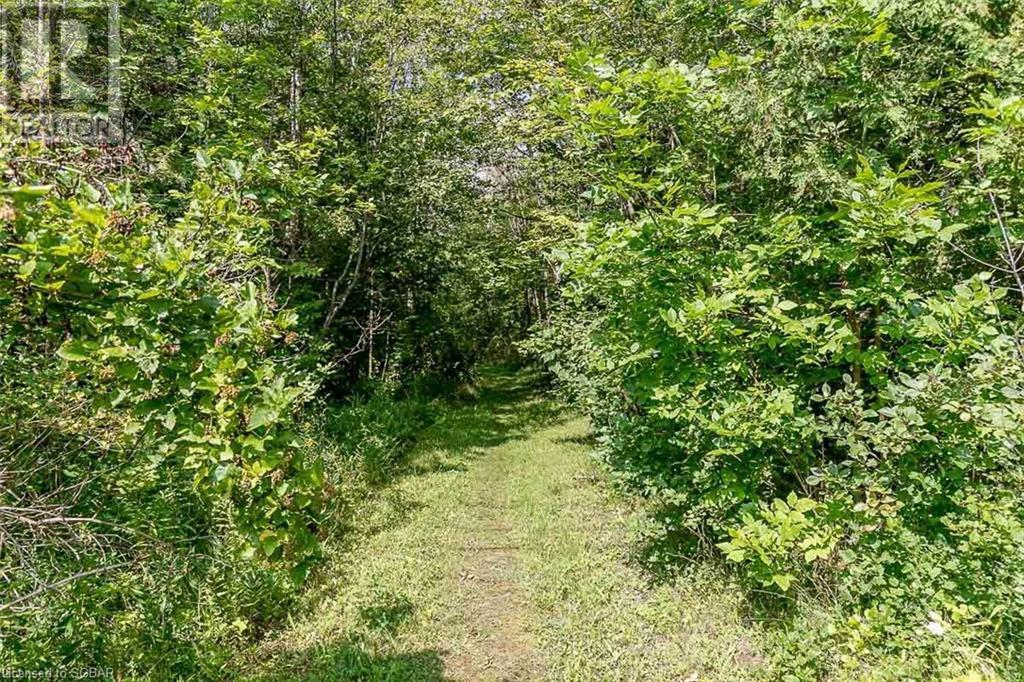 457 Silver Birch Drive, Tiny, Ontario  L9M 0M5 - Photo 41 - 40155786