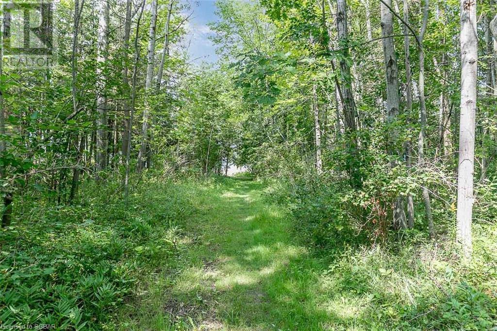457 Silver Birch Drive, Tiny, Ontario  L9M 0M5 - Photo 42 - 40155786