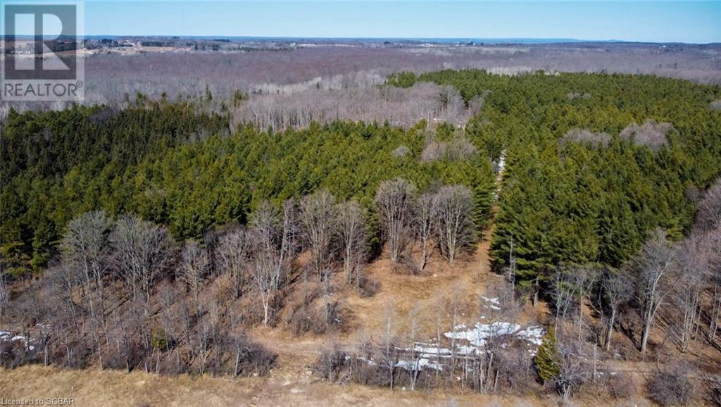 062653 Sunny Valley Road, Georgian Bluffs, Ontario  N4K 5N6 - Photo 7 - 40075572