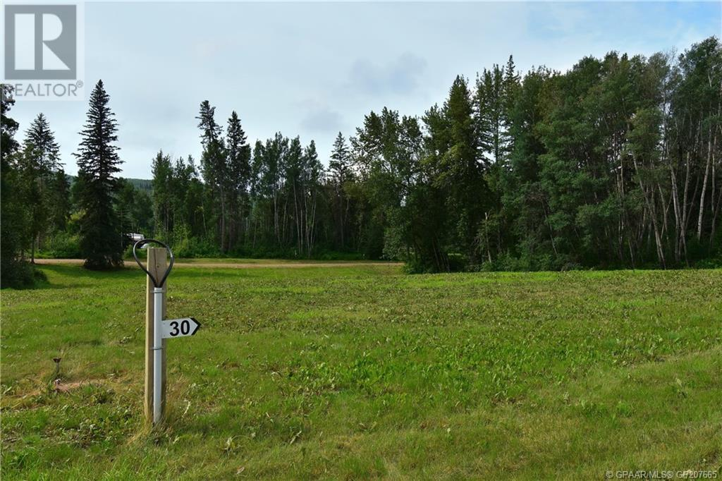 Property Image 3 for #30, 45027 802 Township