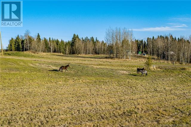 118 Blueberry Meadows Lane, Rural Clearwater County, Alberta  T0M 1H0 - Photo 29 - CA0180591