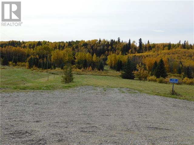 118 Blueberry Meadows Lane, Rural Clearwater County, Alberta  T0M 1H0 - Photo 10 - CA0180591