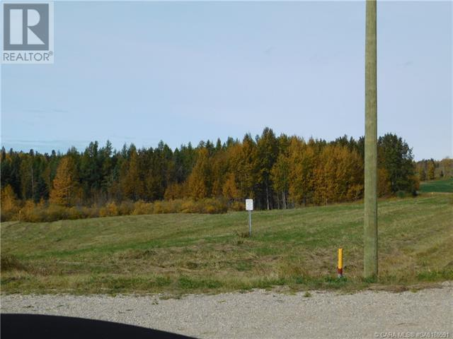 118 Blueberry Meadows Lane, Rural Clearwater County, Alberta  T0M 1H0 - Photo 14 - CA0180591