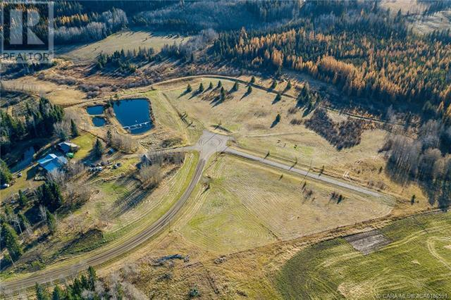 118 Blueberry Meadows Lane, Rural Clearwater County, Alberta  T0M 1H0 - Photo 25 - CA0180591