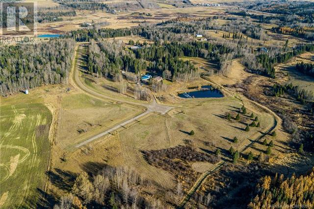 118 Blueberry Meadows Lane, Rural Clearwater County, Alberta  T0M 1H0 - Photo 22 - CA0180591