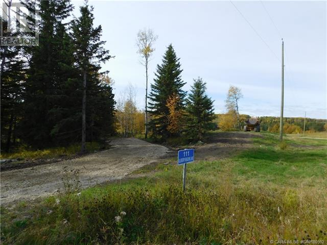 122 Blueberry Meadows Lane, Rural Clearwater County, Alberta  T0M 1H0 - Photo 5 - CA0180592