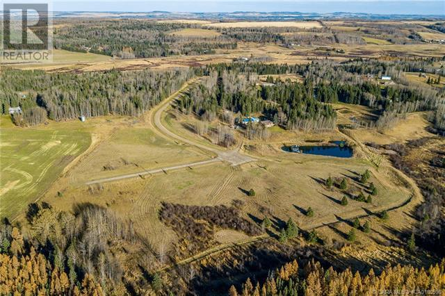 111 Blueberry Meadows Lane, Rural Clearwater County, Alberta  T0M 1H0 - Photo 21 - CA0180596