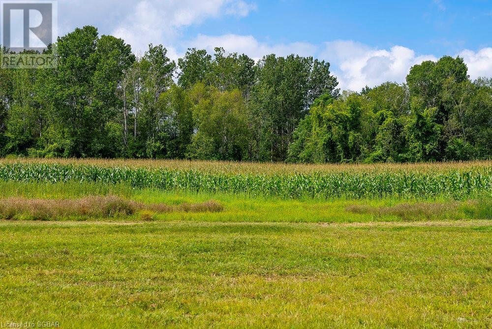 7759 Poplar Sideroad, Clearview, Ontario  L9Y 3Y9 - Photo 6 - 40157314