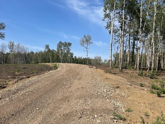 #12 52528 Range Road 191, Rural Beaver County, Alberta  T0B 4J0 - Photo 2 - E4260109