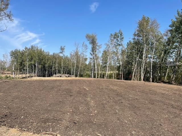 #12 52528 Range Road 191, Rural Beaver County, Alberta  T0B 4J0 - Photo 4 - E4260109