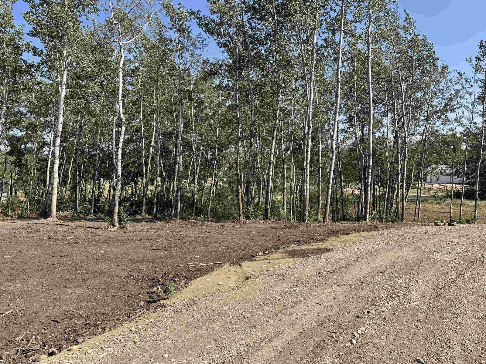 #12 52528 Range Road 191, Rural Beaver County, Alberta  T0B 4J0 - Photo 5 - E4260109