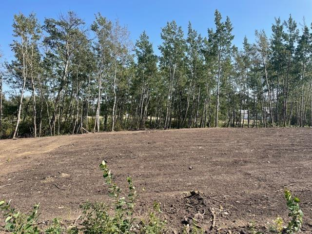 #12 52528 Range Road 191, Rural Beaver County, Alberta  T0B 4J0 - Photo 8 - E4260109