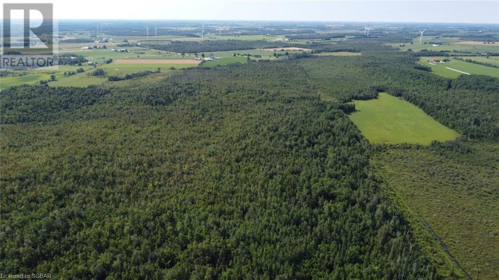 Lt 41-42 Center B Line, Grey Highlands, Ontario  N0C 1M0 - Photo 9 - 40154074