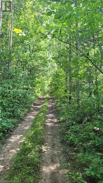 Lt 41-42 Center B Line, Grey Highlands, Ontario  N0C 1M0 - Photo 2 - 40154074