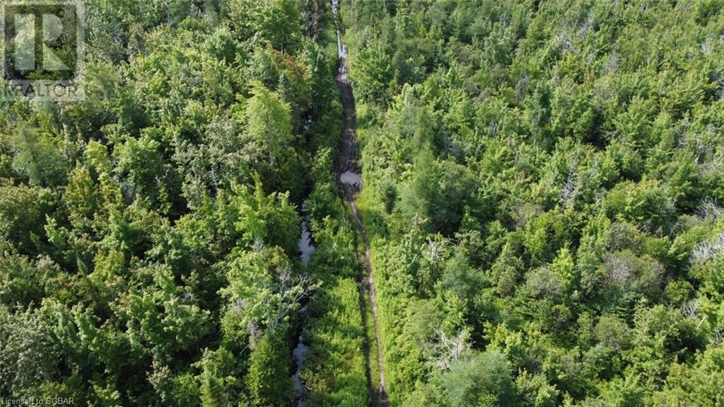 Lt 41-42 Center B Line, Grey Highlands, Ontario  N0C 1M0 - Photo 8 - 40154074