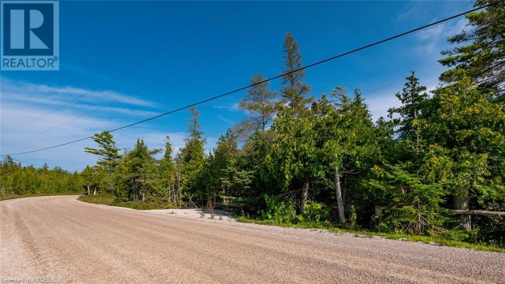 Pt Lt 30 Con 7 Old Pine Tree Road, North Bruce Peninsula, Ontario  N0H 1Z0 - Photo 1 - 40158221