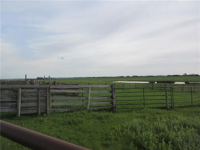 250 Range Rd, Rural Wheatland County, Alberta  T1P 1J6 - Photo 5 - C4302878