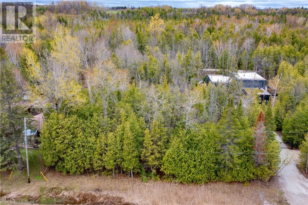 Lt 29 26 Highway W, The Blue Mountains, Ontario  N0H 1P0 - Photo 11 - 40109206