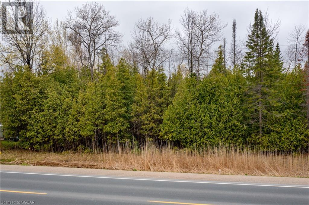 Lt 29 26 Highway W, The Blue Mountains, Ontario  N0H 1P0 - Photo 12 - 40109206