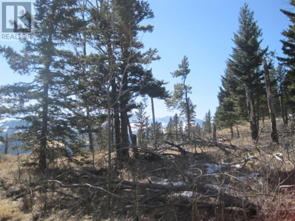 48 Kananaskis Way, Coleman, Alberta  T0K 0M0 - Photo 9 - A1067597