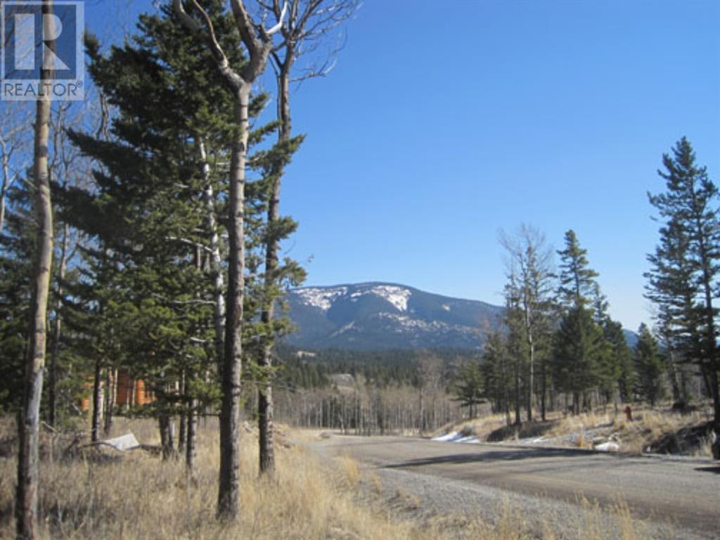 48 Kananaskis Way, Coleman, Alberta  T0K 0M0 - Photo 5 - A1067597