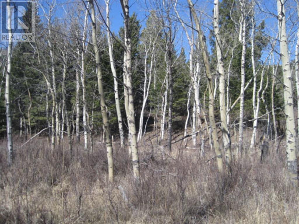48 Kananaskis Way, Coleman, Alberta  T0K 0M0 - Photo 6 - A1067597