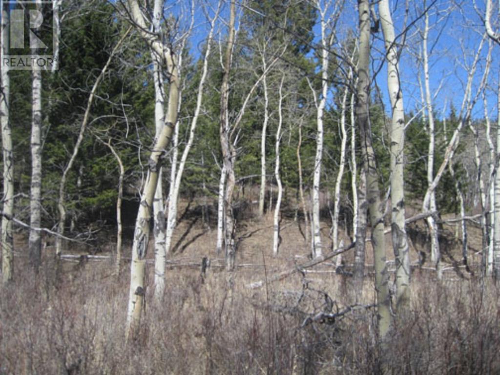 48 Kananaskis Way, Coleman, Alberta  T0K 0M0 - Photo 7 - A1067597