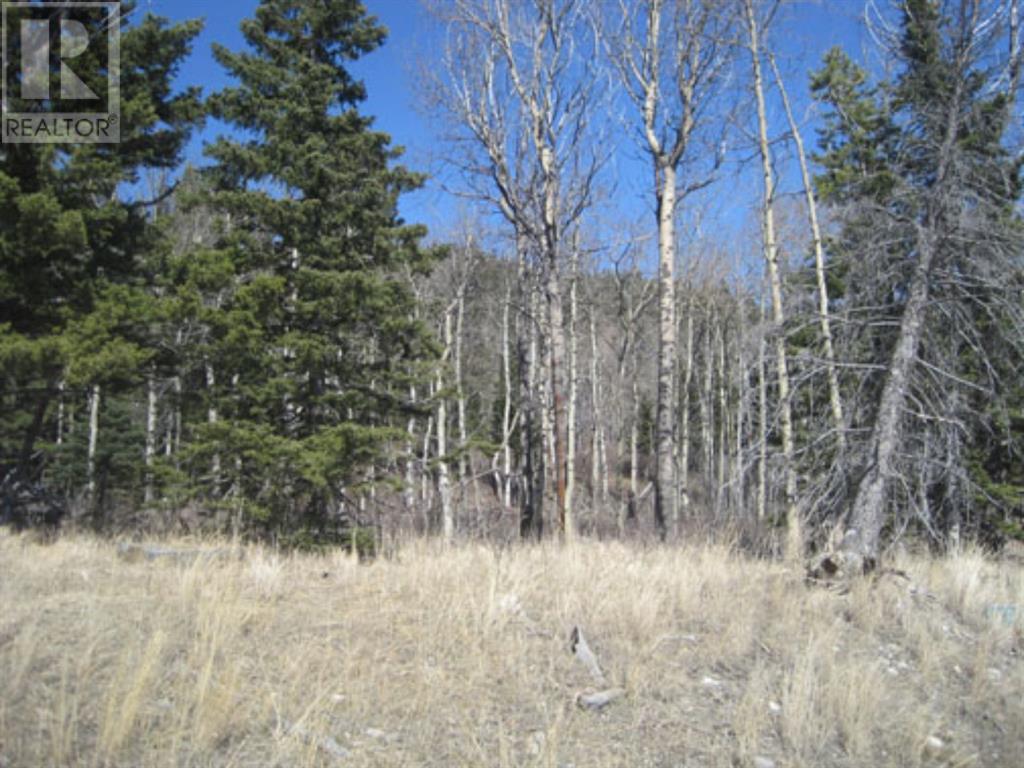 48 Kananaskis Way, Coleman, Alberta  T0K 0M0 - Photo 1 - A1067597