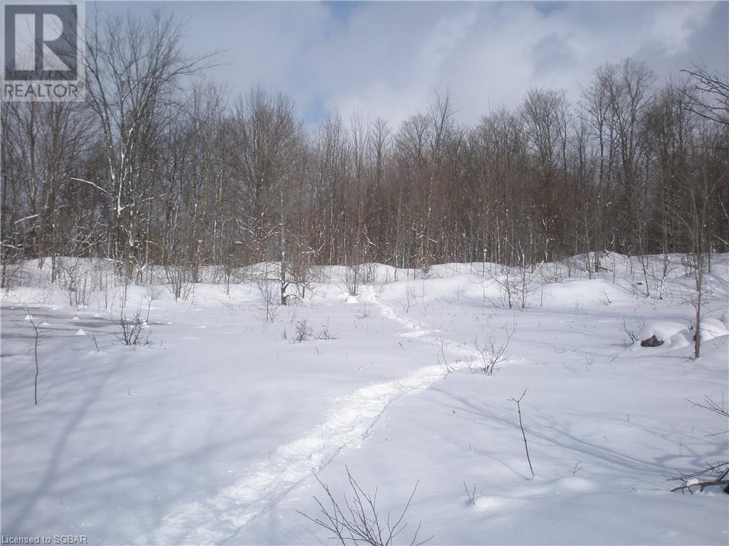825215 40 Grey Road, Grey Highlands, Ontario  N0H 2S0 - Photo 25 - 40134114