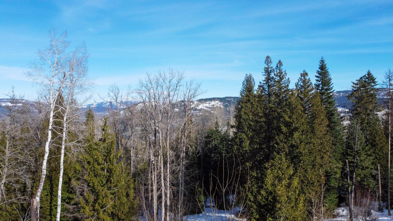 2812 Cedar Crescent, Rossland, British Columbia  V0G 1Y0 - Photo 15 - 2456707
