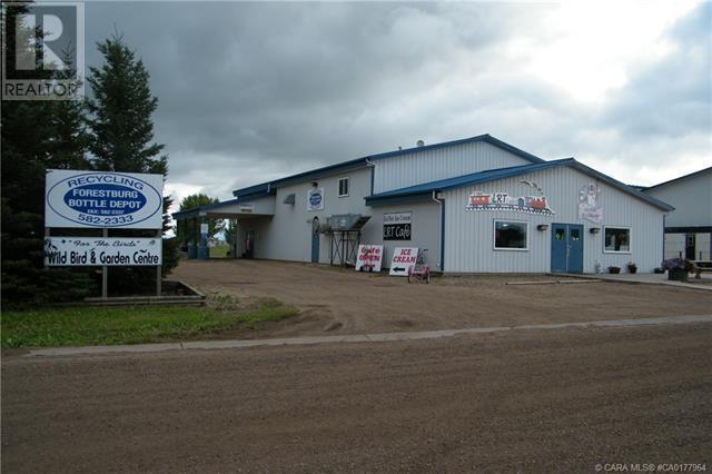 4706 43 Avenue, Forestburg, Alberta  T0B 1N0 - Photo 2 - CA0177964