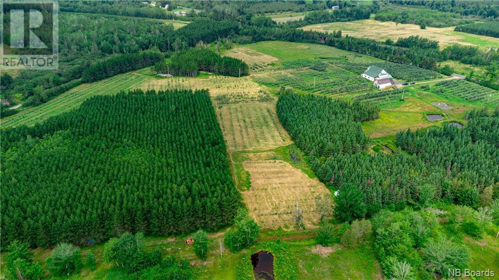 320 Red Bank Road, Chipman, New Brunswick  E4A 2B1 - Photo 4 - NB062835