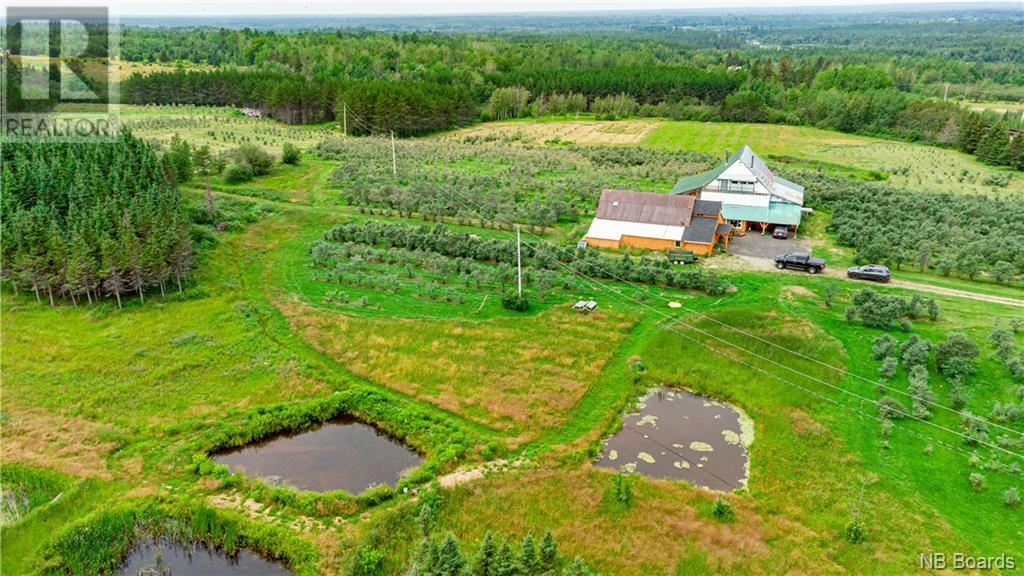 320 Red Bank Road, Chipman, New Brunswick  E4A 2B1 - Photo 48 - NB062916